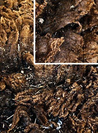Esimerkki huonosta ja jalostukseen kelpaamattomasta villasta